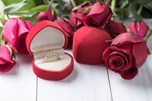 Фотографии Розы Кольцо Красный Цветы