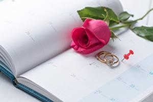 Фото Розы День святого Валентина Кольцо Календарь Цветы