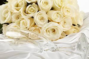 Фотография Розы Белый Бокалы Цветы