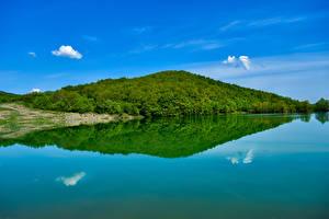 Картинки Россия Крым Леса Залив Холмы