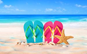 Фотографии Морские звезды Вьетнамки Песок Пляж