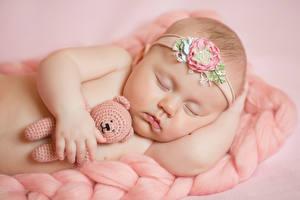 Обои Плюшевый мишка Грудной ребёнок Спящий Ребёнок