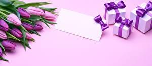Картинки Тюльпаны Подарки Шаблон поздравительной открытки Цветы
