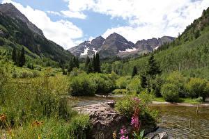 Фотография США Горы Леса Кусты Ручей Maroon Bells Colorado Природа