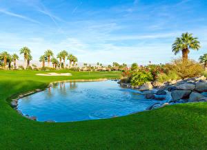 Фотография Штаты Парки Пруд Камень Калифорния Газон Пальмы Palm Desert
