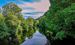 Обои Великобритания Реки Леса Уэльс Betws-y-coed Природа
