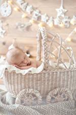Картинки Корзина Грудной ребёнок Спящий Ребёнок