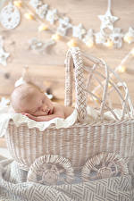 Картинки Корзины Младенцы Спит ребёнок