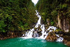 Картинки Аляска Леса Водопады Утес Природа