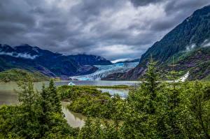 Фото Аляска Горы Речка Ель