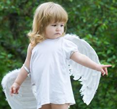 Фото Ангелы Девочки Крылья Русые Ребёнок