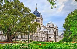 Обои Австралия Мельбурн Дома Музеи Дерево Royal Exhibition Building город