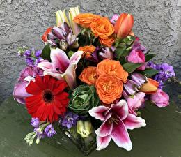 Фотография Букет Лилия Розы Гербера Тюльпаны Цветы
