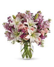 Обои Букет Лилии Роза Левкой Белый фон цветок