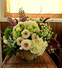 Картинки Букеты Лютик Гортензия Цветы