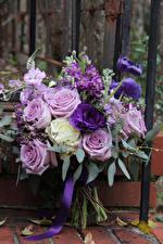 Фотография Букеты Розы Лизантус Маттиола Цветы
