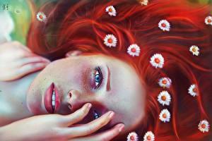 Обои Ромашки Рисованные Рыжие Смотрит Волосы Лицо Фантастика Девушки
