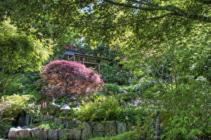 Фото Канада Сады Водопады HDR Кусты Butchart Gardens Природа
