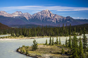 Фотографии Канада Парки Горы Реки Пейзаж Джаспер парк Ель Athabasca River