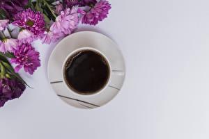 Фото Кофе Хризантемы Серый фон Чашка Пища Цветы