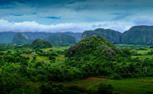 Фото Куба Поля Утес Пальмы Vinales Природа