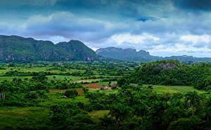 Фото Куба Горы Поля Пальм Кустов Vinales Природа