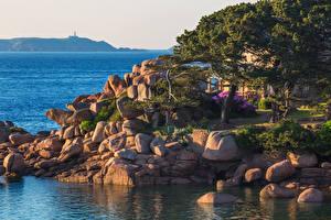 Картинки Франция Побережье Камень Saint-Guirec Brittany Природа