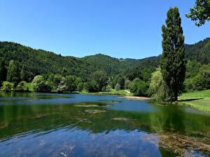 Картинка Франция Озеро Побережье Дерева Холмов Belcaire Природа