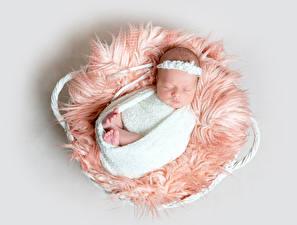 Фотография Серый фон Младенцы Спит Ребёнок