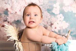 Картинка Младенцы Взгляд