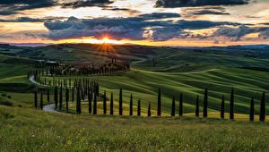 Фотография Италия Тоскана Пейзаж Рассветы и закаты Поля Небо Холмы Деревья Облака