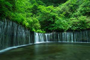 Картинка Япония Водопады Утес Shiraito Falls Природа