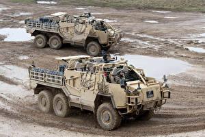 Фотографии Боевая техника Вдвоем 2009-18 Coyote TSV Армия
