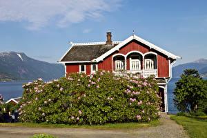 Картинки Норвегия Здания Особняк Кусты Balestrand город