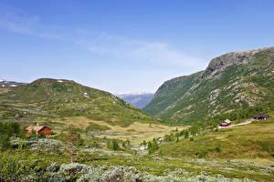 Обои Норвегия Горы Луга Природа
