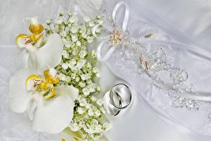 Фотография Орхидеи Украшения Кольцо Цветы