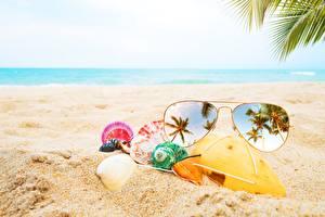 Фото Ракушки Очки Песок Пляж Отражение Природа