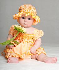 Обои Подсолнухи Младенец Девочка Платья Шляпе Взгляд ребёнок