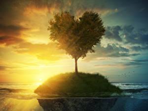Картинка Рассветы и закаты Остров Небо Деревья Сердечко Природа