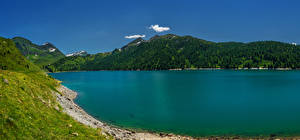 Картинка Швейцария Озеро Берег Горы Леса Lago Ritom Ticino Природа