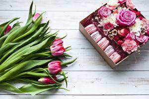 Фотография Тюльпаны Розы Макарон Цветы