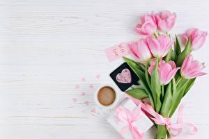 Фотографии Тюльпаны День всех влюблённых Розовый Сердечко Цветы