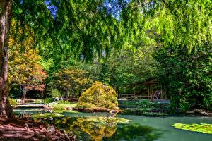 Фотография США Сады Пруд Деревья Кусты Gibbs Gardens