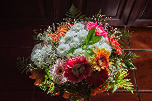 Фотографии Букеты Хризантемы цветок