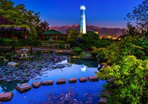 Фотографии Чили Сады Вечер Пруд Камни Кусты Santiago Japanese Garden Природа