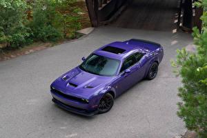 Фотография Dodge Фиолетовых Металлик Сверху 2019 Challenger R-T Scat Pack Widebody машина