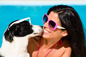 Картинки Собаки Брюнетка Улыбка Очки Девушки