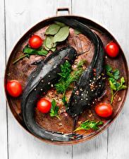 Фотографии Рыба Томаты Приправы Укроп