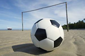 Фотография Футбол Мяч Спорт