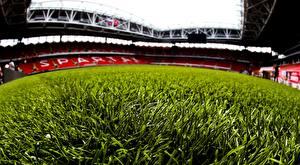 Обои Футбол Трава Газон Стадион